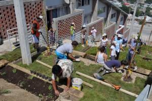 Plantar en los taludes  como  huerto comunitario